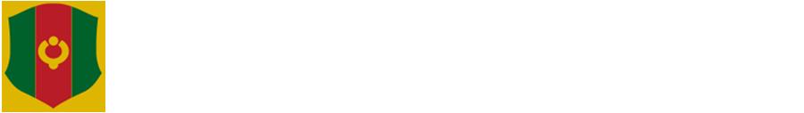 社団法人認知症高齢者研究所